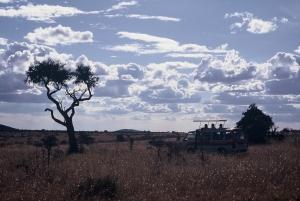 swooder africa